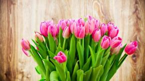 З днем весни, любові й краси!