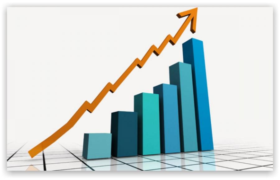 За 11 місяців ДО та ДП системи Держрезерву показали стрімку динаміку росту